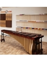 Visit of the Atelier and Percuspace