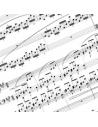 Partitions pour Xylophone